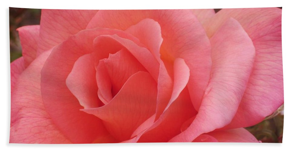 Rose Bath Sheet featuring the photograph Truly Pink by JAMART Photography