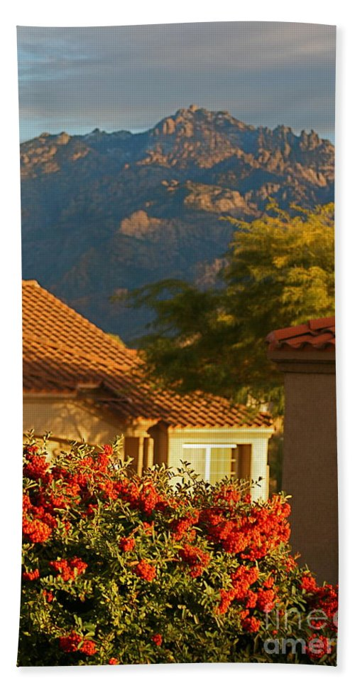 Mountains Hand Towel featuring the photograph Tucson Beauty by Nadine Rippelmeyer