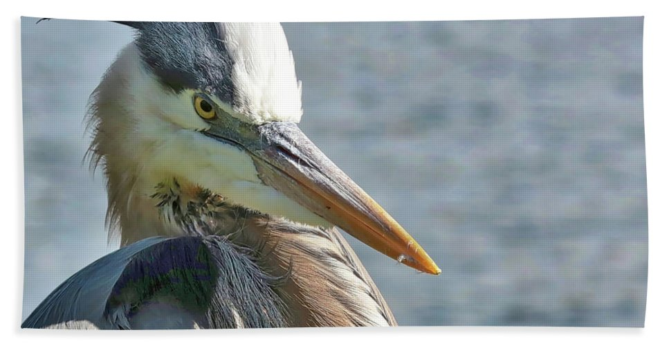 Heron Hand Towel featuring the photograph Tuft Guy by Carol Groenen