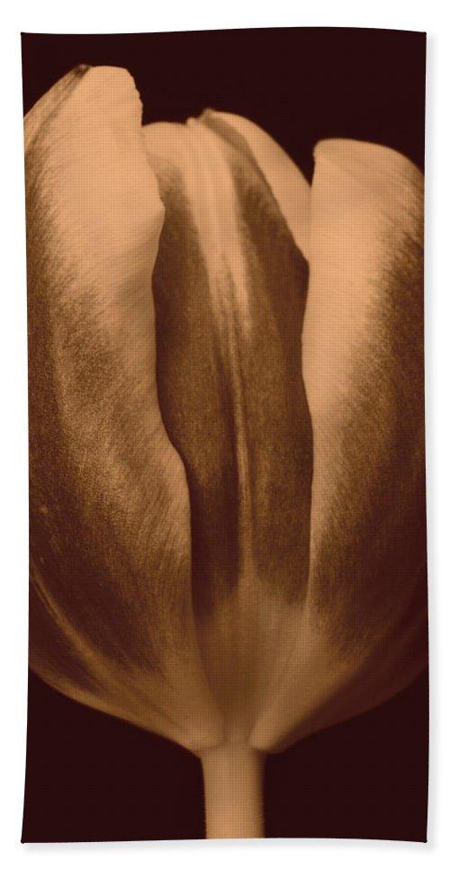 Lehtokukka Hand Towel featuring the photograph Tulip 1 by Jouko Lehto
