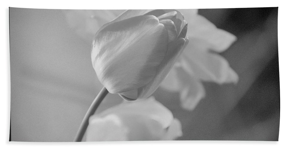 Tulip Hand Towel featuring the photograph Tulip Black N White by Wendy Fox
