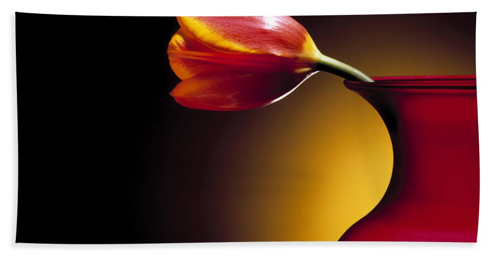 Flower Hand Towel featuring the photograph Tulip In Vase by Daniel Troy