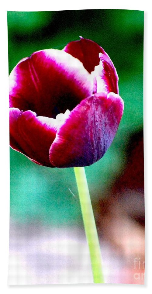 Digital Photo Hand Towel featuring the photograph Tulip Me by David Lane