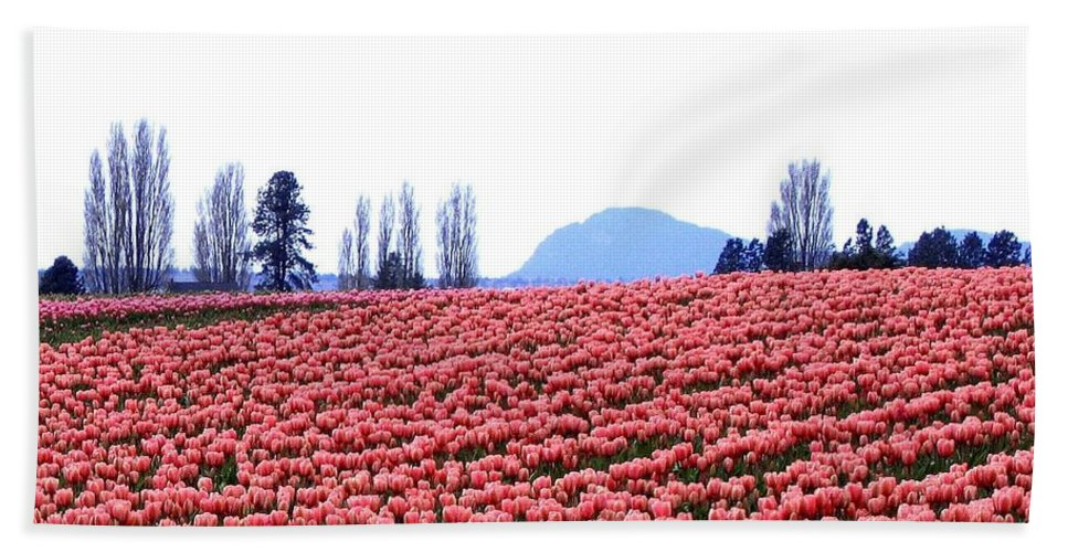 Agriculture Bath Sheet featuring the photograph Tulip Town 3 by Will Borden