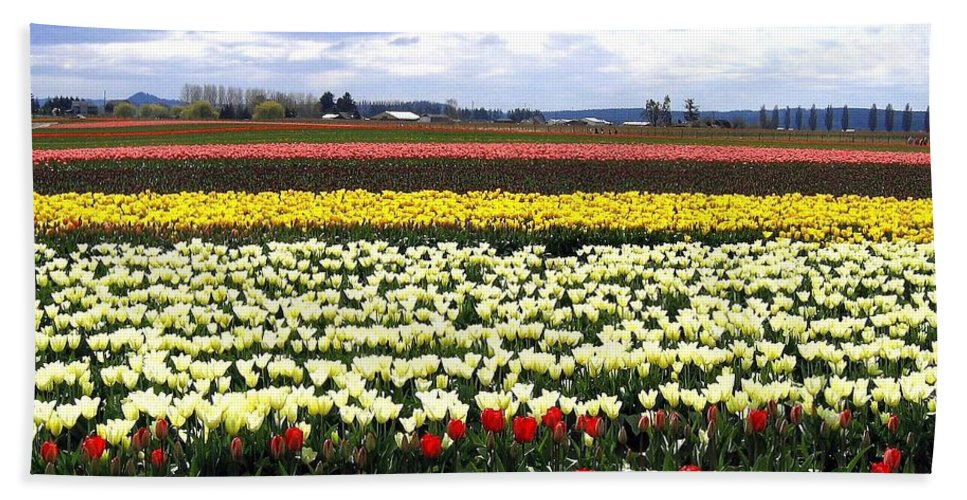 Agriculture Bath Sheet featuring the photograph Tulip Town 4 by Will Borden