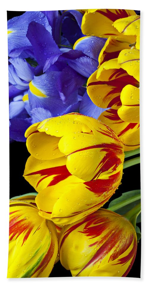 Yellow Hand Towel featuring the photograph Tulips And Iris by Garry Gay