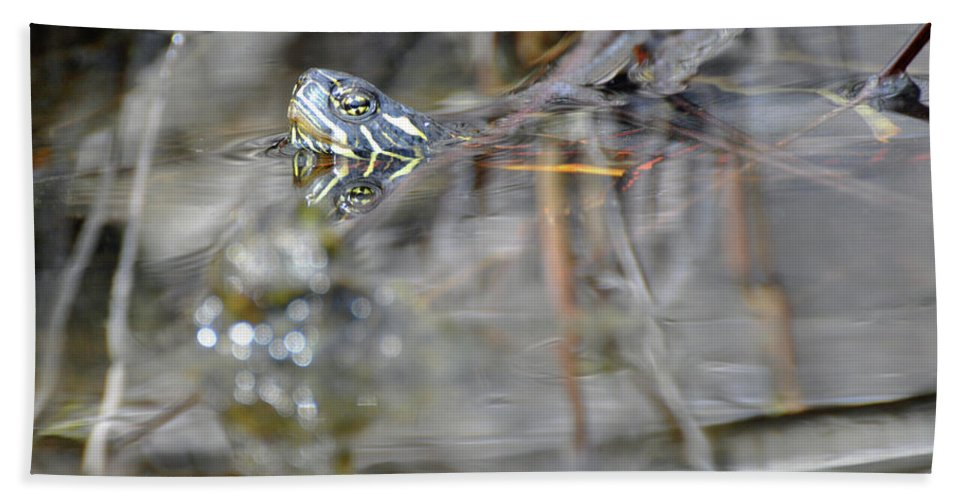 Turtle Hand Towel featuring the photograph Turtle Eye Reflection by Glenn Gordon