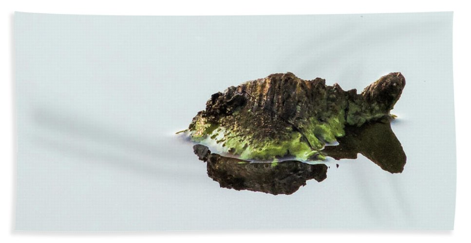 Turtle Bath Towel featuring the photograph Turtle or Mountain by Randy J Heath