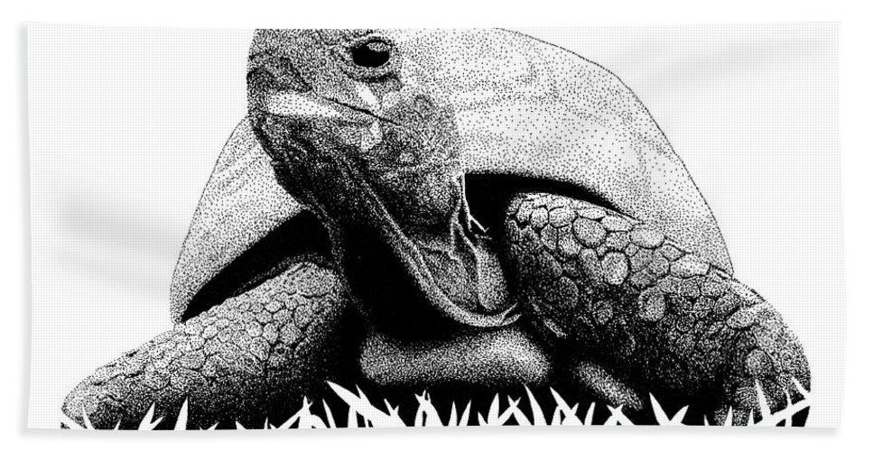 Pen Bath Sheet featuring the drawing Turtle by Scott Woyak