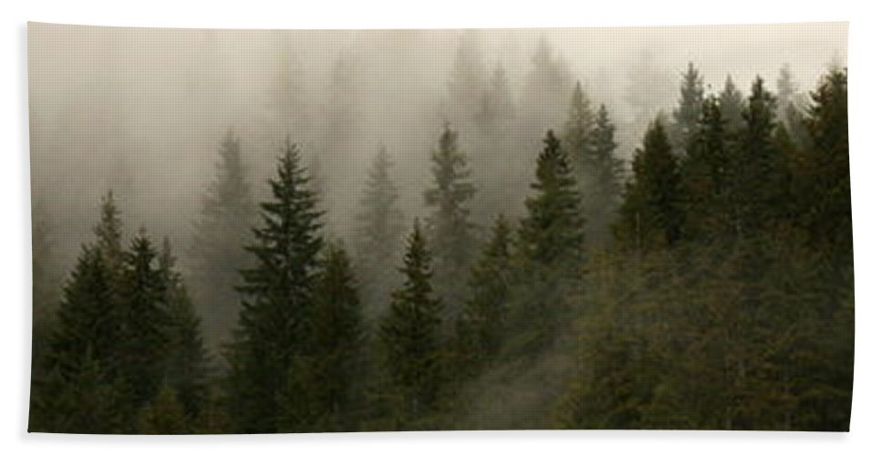 Forks Bath Sheet featuring the photograph Twilight Mist by Carol Groenen