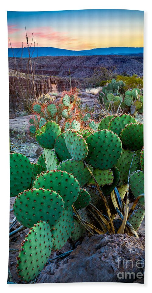America Bath Towel featuring the photograph Twilight Prickly Pear by Inge Johnsson