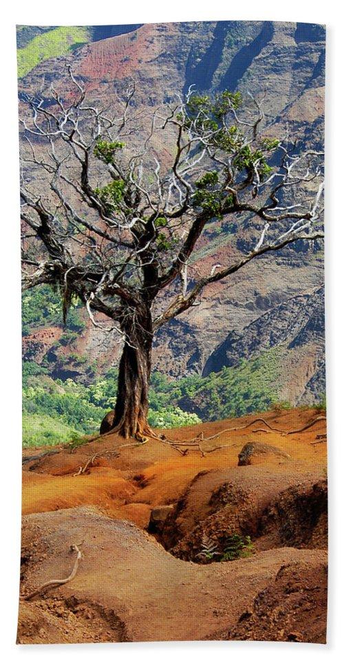 Tree Bath Towel featuring the photograph Twisted Tree, Wiamea Canyon, Kawai Hawaii by Michael Bessler