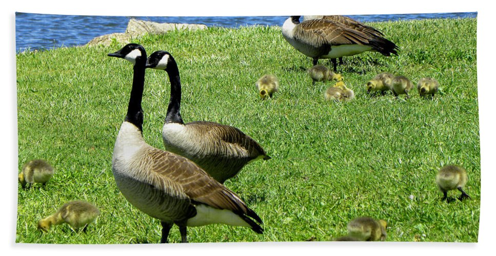 Geese Bath Sheet featuring the photograph Two By Two by Sandi OReilly