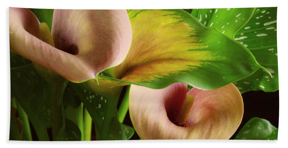 Flower Bath Sheet featuring the photograph Two Lily With Leaf by Donna Gonzales