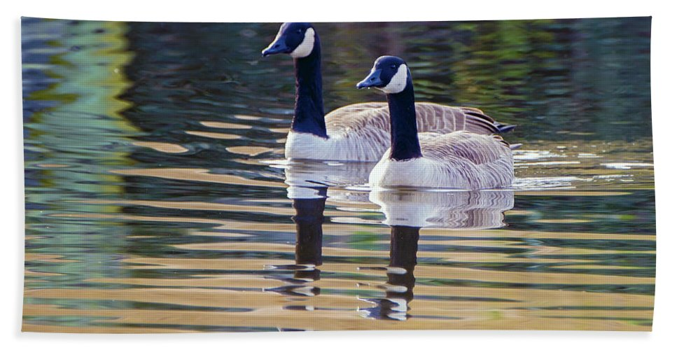 2d Hand Towel featuring the photograph Two Of A Kind by Brian Wallace