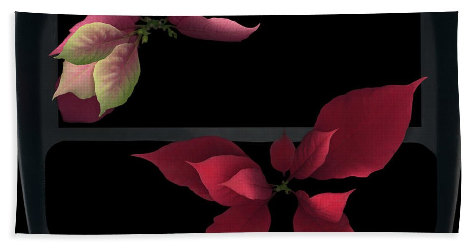 Two Poinsettias Black Gray Red Pink Green Flower Floral Flora Plant Petal Leaf Leaves Vein Stem Christmas Holy Holiday Bath Sheet featuring the photograph Two Poinsettias by Heather Kirk