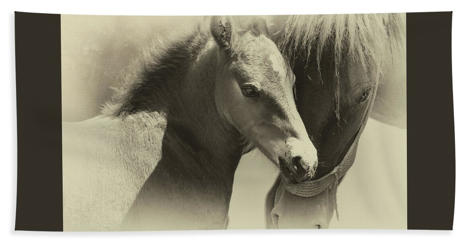 Horse Bath Sheet featuring the photograph Two Souls, One Heart by Theodor Dinulescu