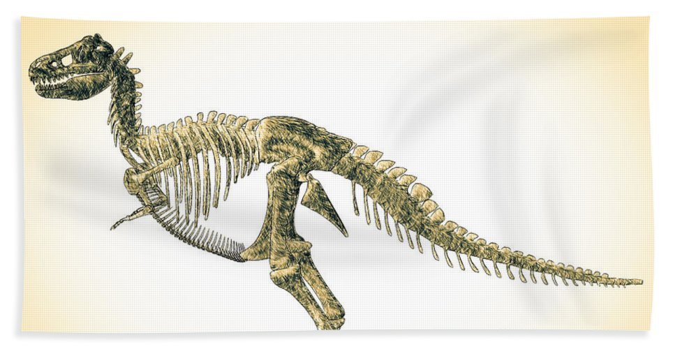 Biology Bath Sheet featuring the digital art Tyrannosaurus Rex Skeleton by Bob Orsillo