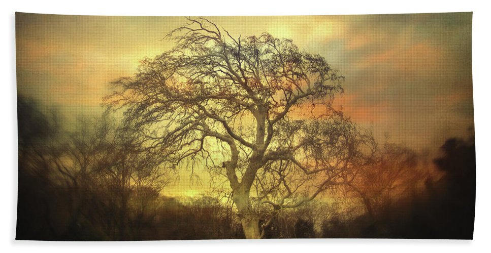 Tree Hand Towel featuring the photograph Un Dernier Crepuscule by Zapista OU