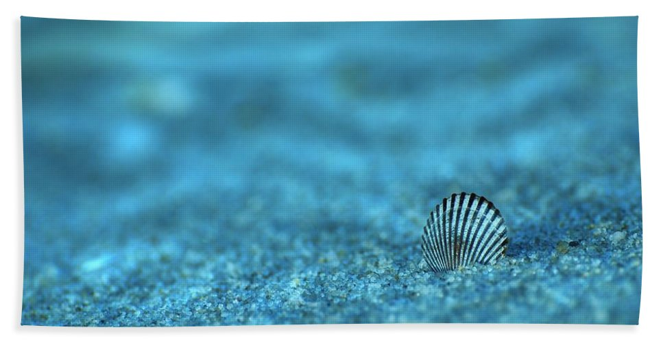 Seashells Bath Towel featuring the photograph Underwater Seashell - Jersey Shore by Angie Tirado
