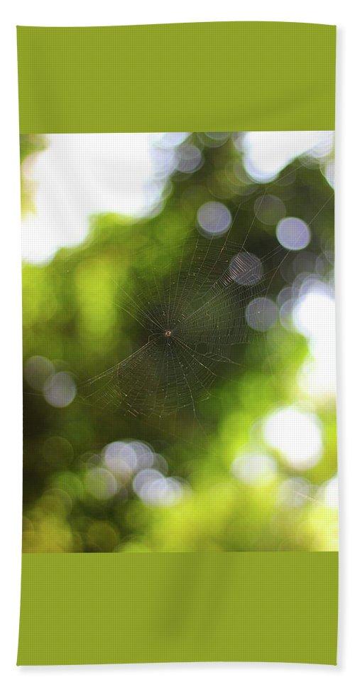 Spdernet Bath Sheet featuring the photograph Untitled Net by Debraj Jana