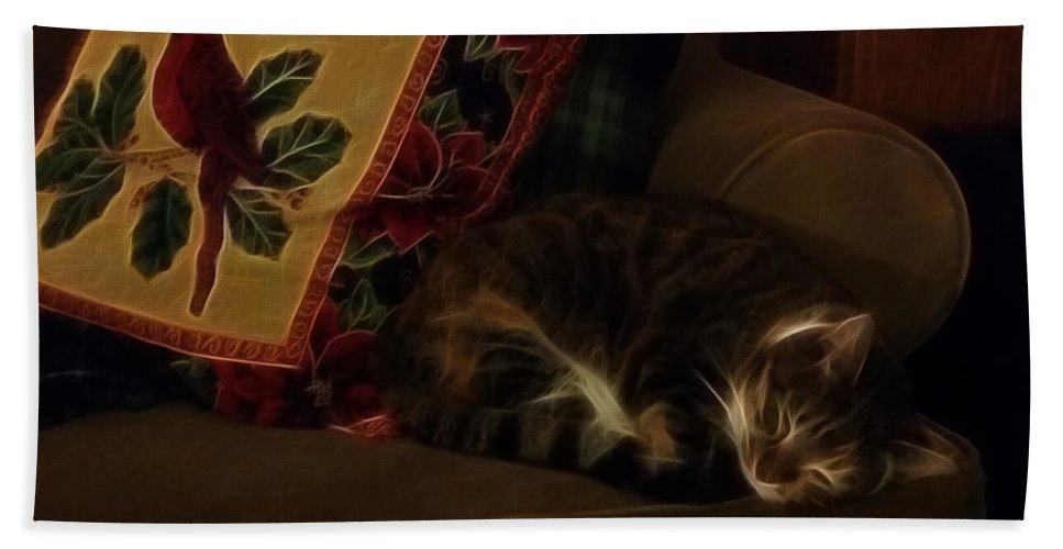 Cats Hand Towel featuring the photograph Untitled4 by Phil Haultain