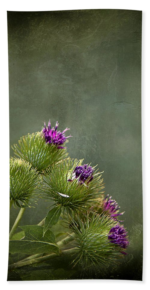 Texture Hand Towel featuring the photograph Up To The Point by Evelina Kremsdorf