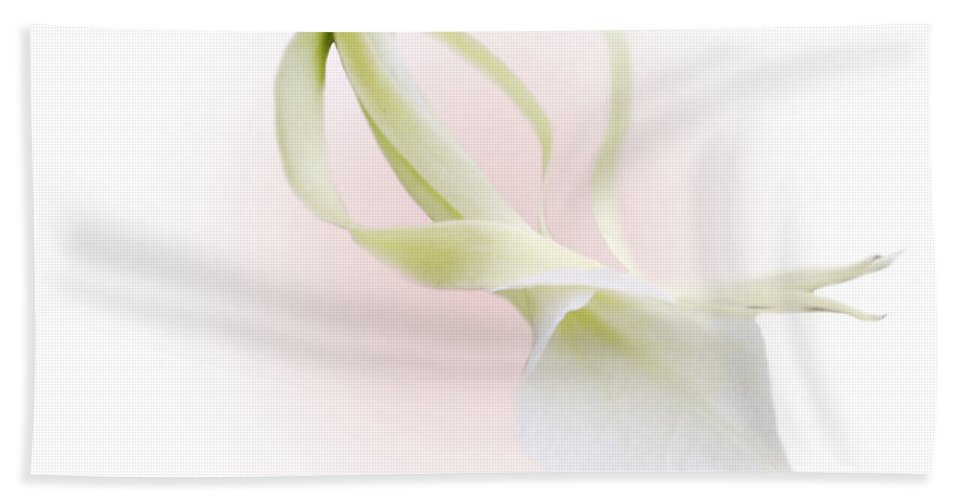 Love Bath Towel featuring the photograph Valentine Orchid by Marilyn Hunt