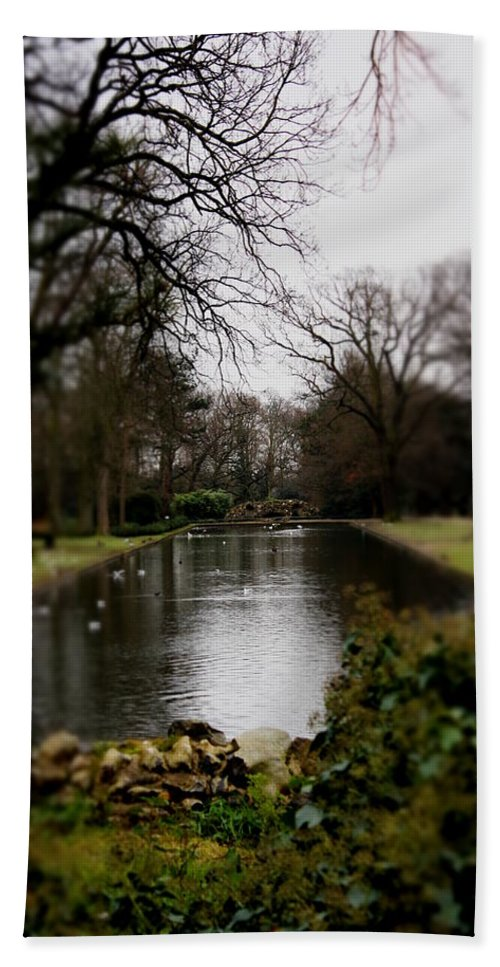 Park Hand Towel featuring the photograph Valentines Park by Perggals - Stacey Turner