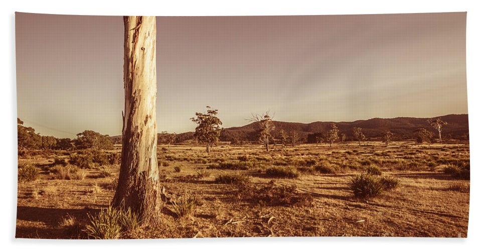Tree Hand Towel featuring the photograph Vast Pastoral Australian Countryside by Jorgo Photography - Wall Art Gallery