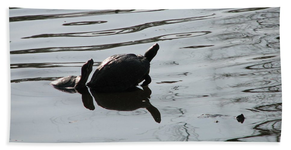Turtle Bath Sheet featuring the photograph Vereen Turtles by Kelly Mezzapelle