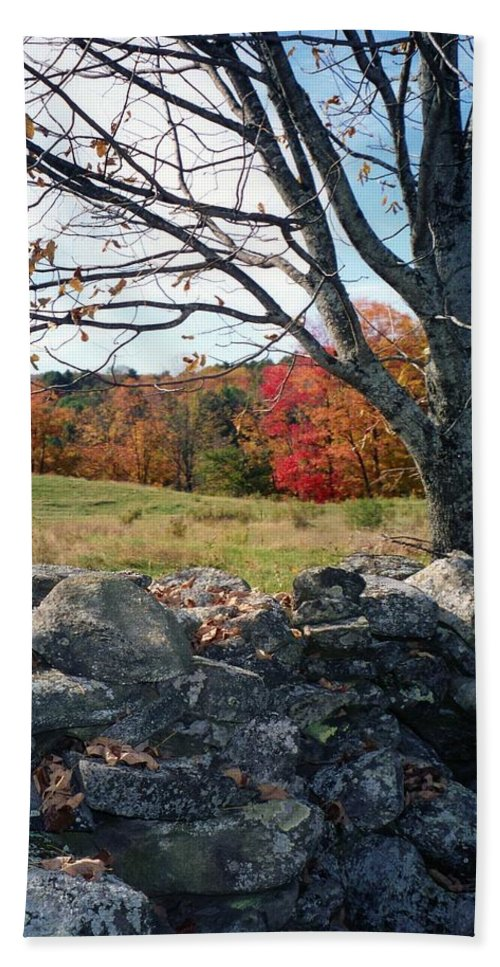 Trees Hand Towel featuring the photograph Vermont Autumn by John Scates