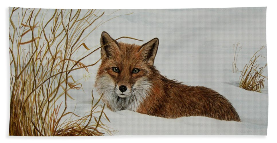 Wildlife Hand Towel featuring the painting Vexed Vixen - Red Fox by Elaine Booth-Kallweit