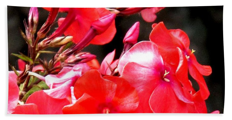 Red Bath Sheet featuring the photograph Vibrant by Ian MacDonald