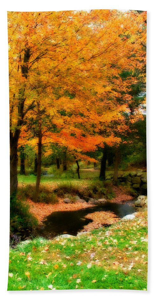Fall Bath Sheet featuring the photograph Vibrant October by Renee Hong