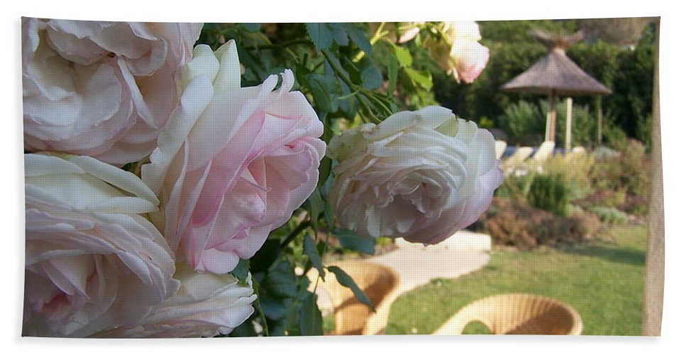 Roses Hand Towel featuring the photograph Villa Roses by Nadine Rippelmeyer
