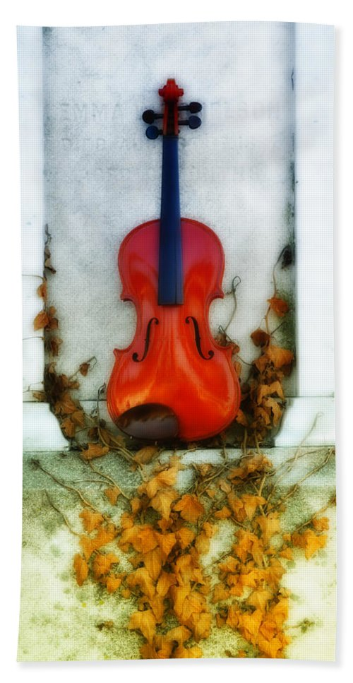 Violin Hand Towel featuring the photograph Vines And Violin by Bill Cannon
