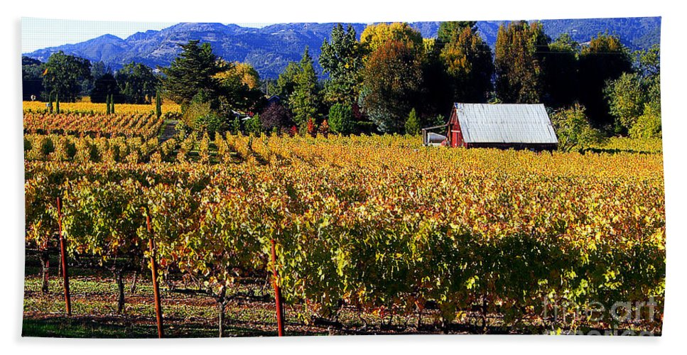 Napa Valley Hand Towel featuring the photograph Vineyard 4 by Xueling Zou