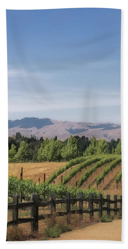Landscapes Bath Towel featuring the photograph Vineyard by Karen W Meyer