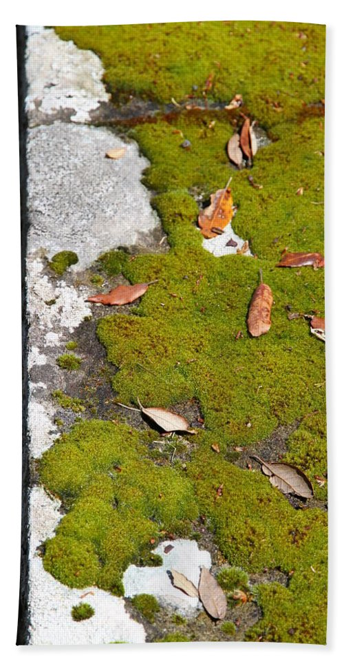 Vintage Hand Towel featuring the photograph Vintage Moss by Valentino Visentini