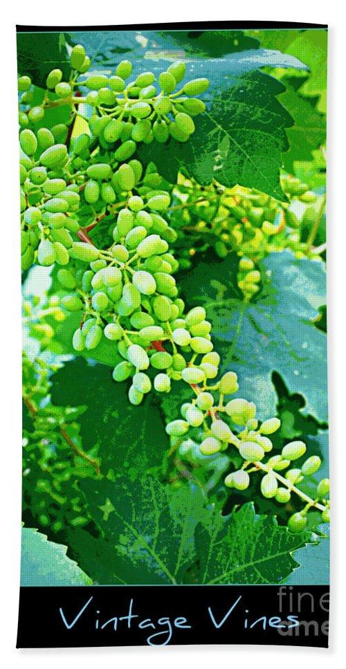 Vineyard Bath Sheet featuring the photograph Vintage Vines by Carol Groenen