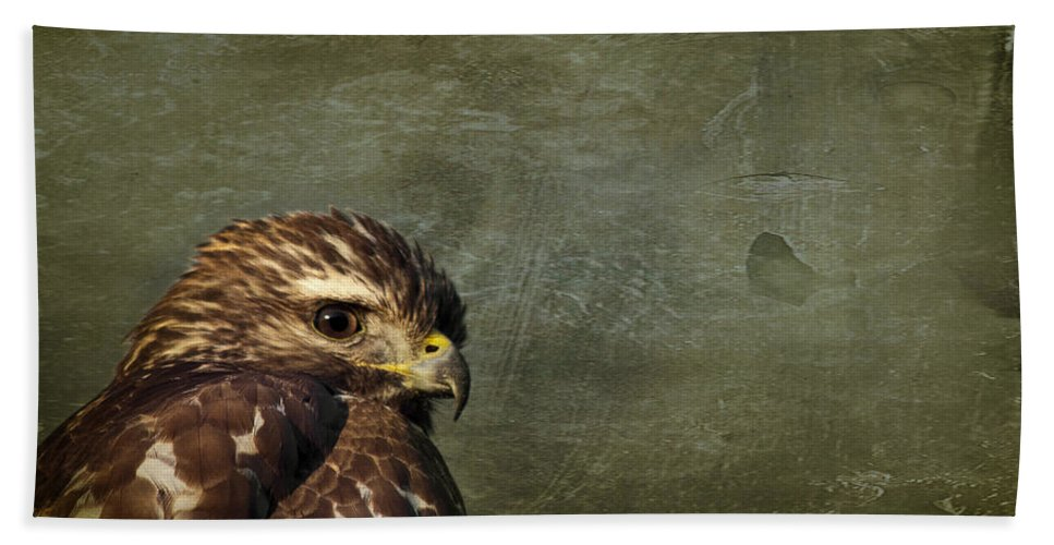 Osprey Hand Towel featuring the photograph Visions Of Solitude by Evelina Kremsdorf