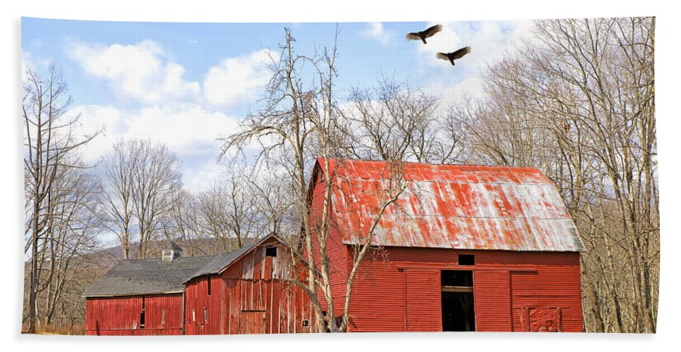 Delaware Bath Sheet featuring the photograph Vultures Over Barn by Paul Fell