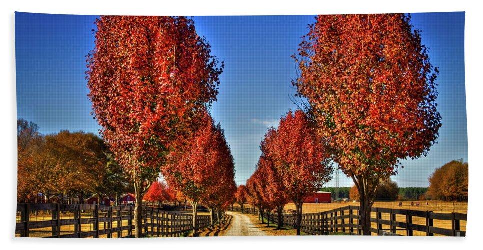 Reid Callaway Bradford Pear Trees. Pyres Calleryana Bath Sheet featuring the photograph Wait Until We Are Full Grown by Reid Callaway