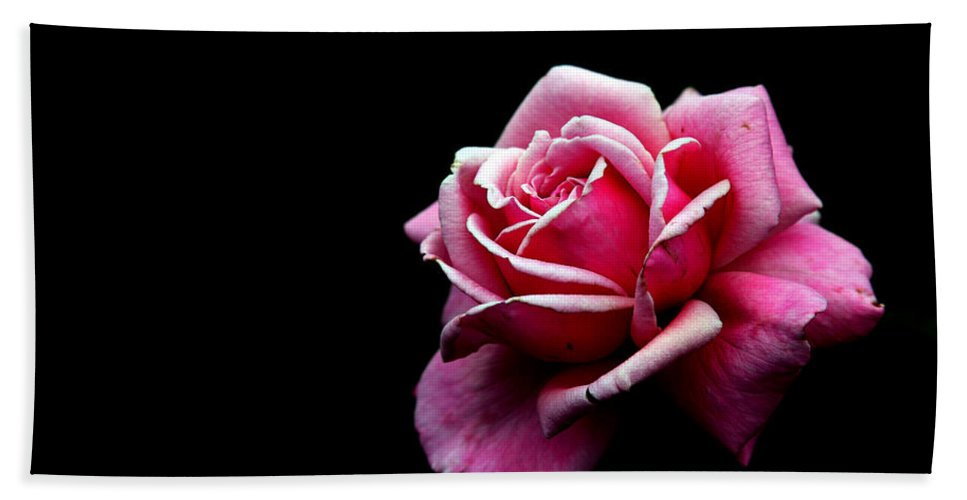 Rose Bath Towel featuring the photograph Waiting by Amanda Barcon
