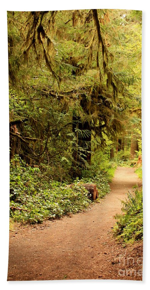 Forest Hand Towel featuring the photograph Walk Into The Forest by Carol Groenen