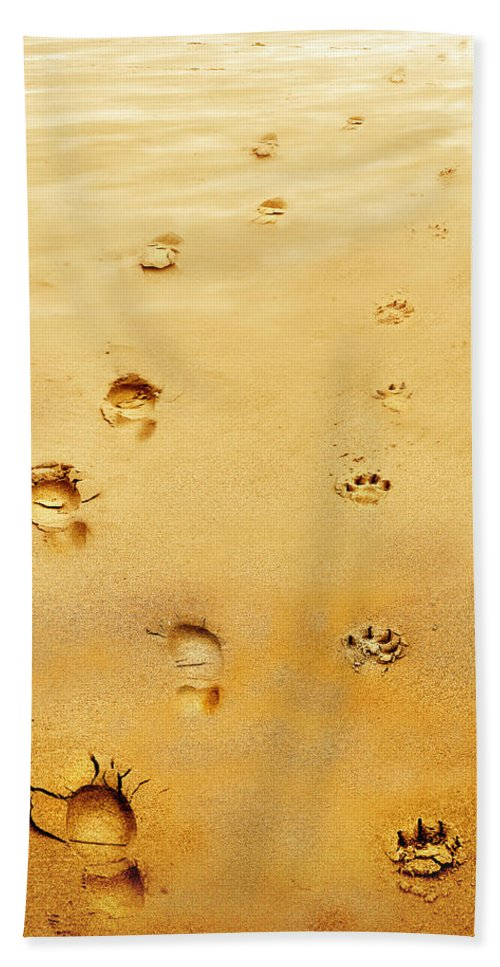 Walking The Dog Bath Towel featuring the photograph Walking The Dog by Mal Bray