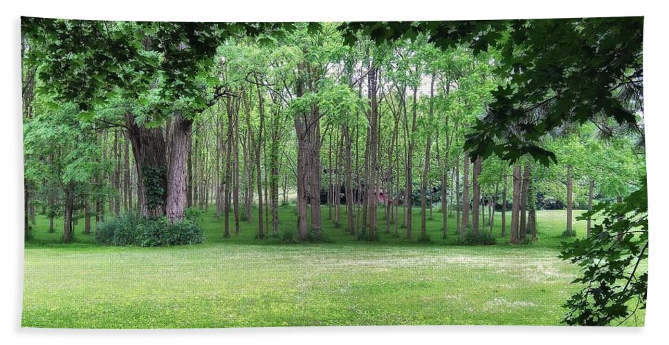 Trees Bath Sheet featuring the photograph Walnut Grove by Kathy McCabe