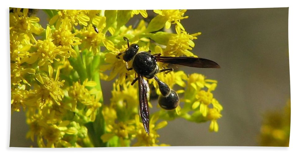 Hand Towel featuring the photograph Wasp 2 by J M Farris Photography