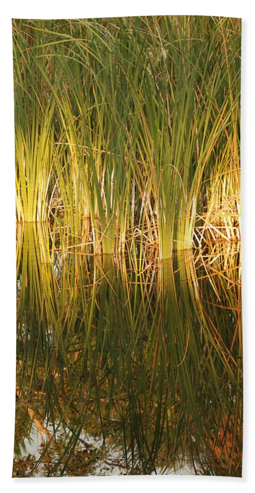 Grass Hand Towel featuring the photograph Water Grass In Sunset by Rob Hans